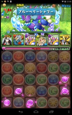 蒼の華龍超級 (10)