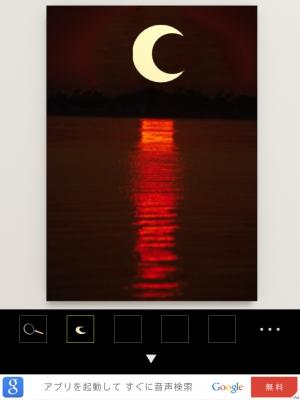 クマと月と太陽と星 (69)