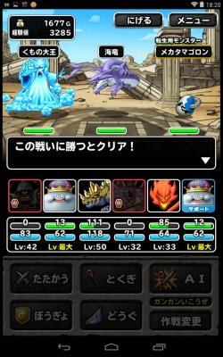 ドラゴンカーニバル 上級 (11)