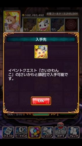 さいかわんこ (64)