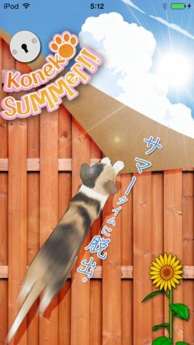 脱出ゲーム 猫が逃げた夏。 157