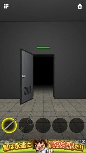 DOORS APEX 042