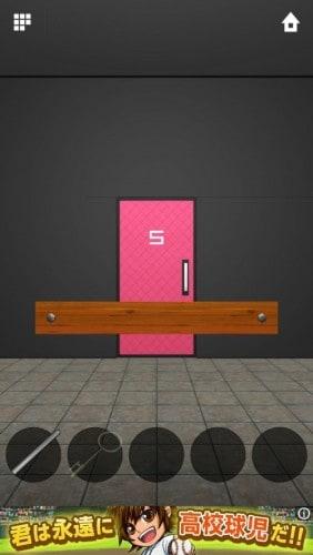 DOORS APEX 043