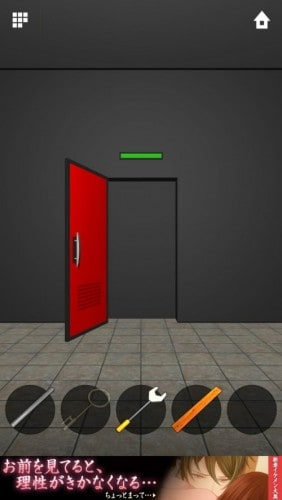 DOORS APEX 065