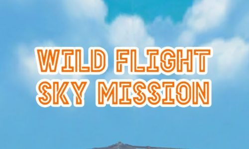 Wild Flight SkyMission 攻略コーナー