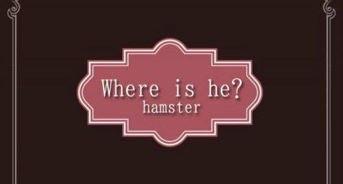 ハムスター逃走中 攻略コーナー