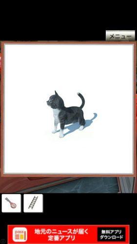 イタリアの猫 攻略 7匹の子猫の場所 その2