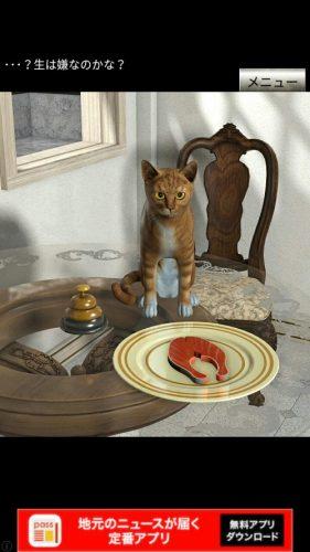 イタリアの猫 攻略 その4(ピザの謎~サケの切り身を焼くまで)