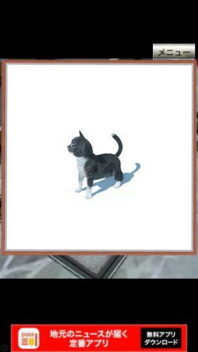 イタリアの猫 攻略 7匹の子猫の場所 その3