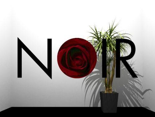 NOIR (ノワール) 攻略コーナー