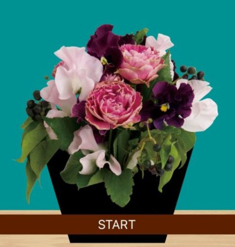 Flower Room (フラワールーム) 攻略コーナー