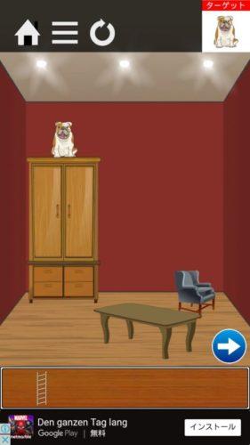 ペットが逃げ出した 攻略 ステージ5