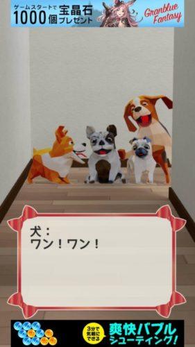犬と私の部屋 その5