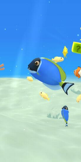 「さかなのすみか」の事前登録受け付けが開始!熱帯魚や深海魚など様々な魚を育てる育成ゲーム