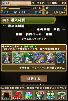 蒼の海賊龍中級1