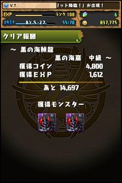 黒の海賊龍中級8